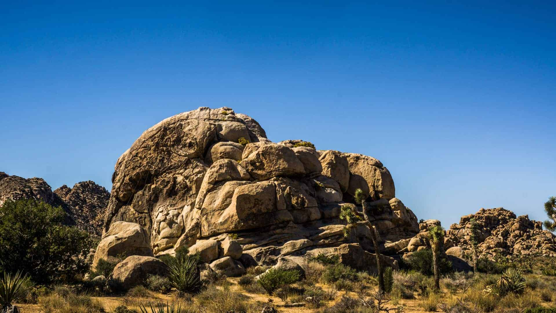 Best-Beginner-climbs-in-joshua-tree-2