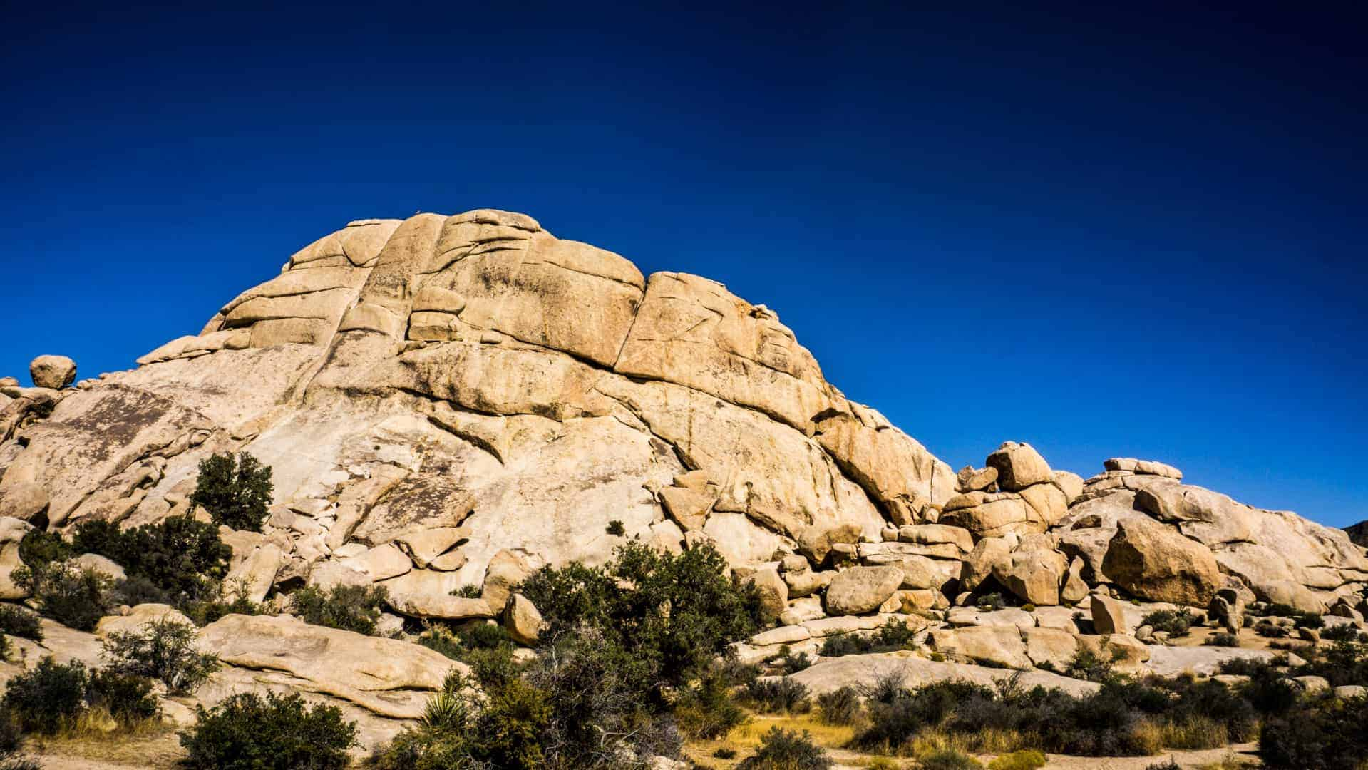 Best-Beginner-climbs-in-joshua-tree-6