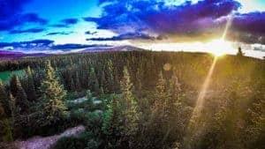 Boondocking Near Denali National Park