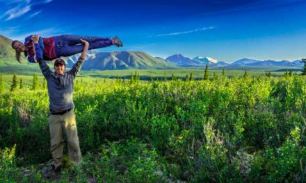 Denali National Park: An Untouched Wilderness
