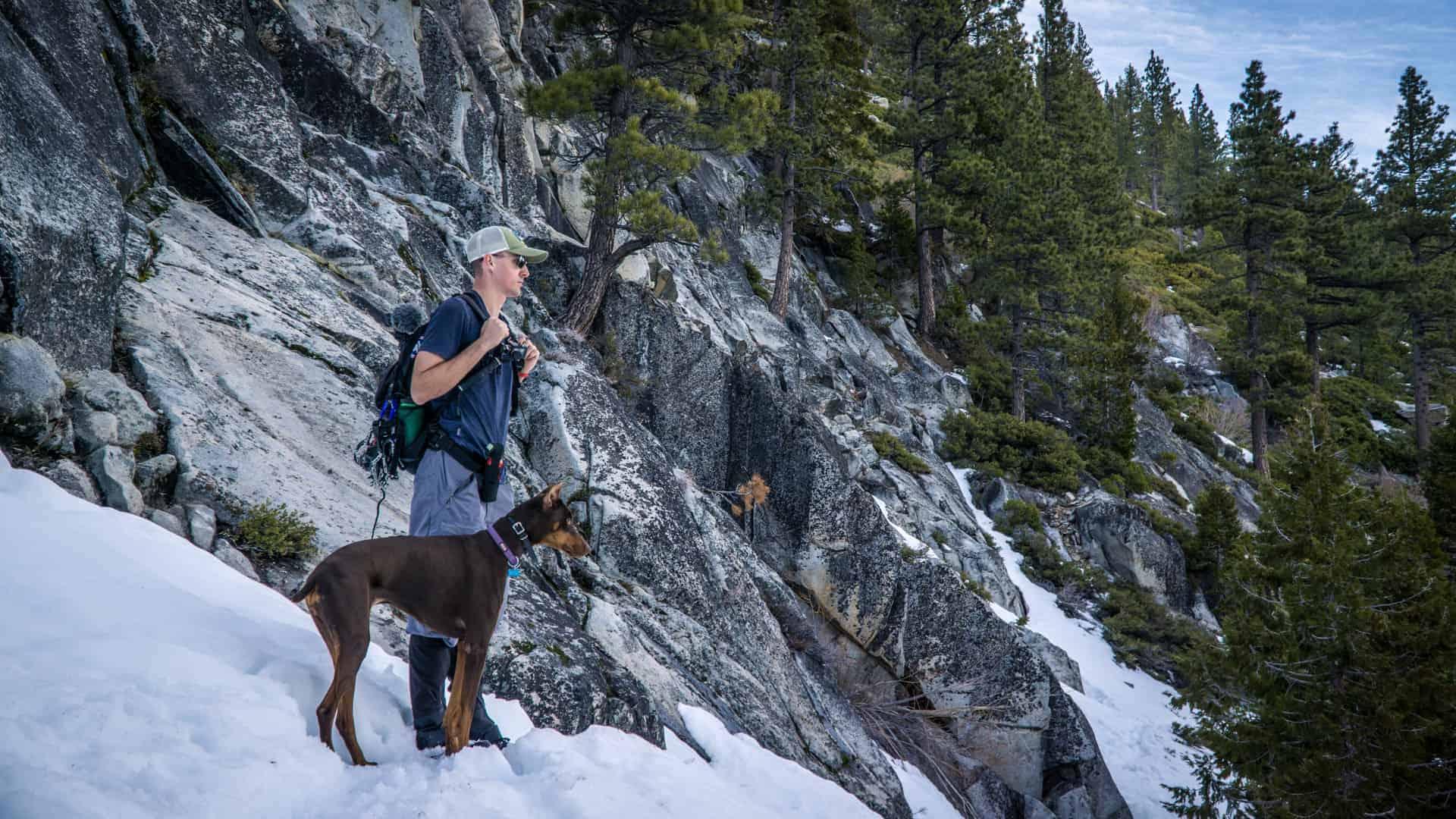 Dog Friendly Hike Near Lake Tahoe-2