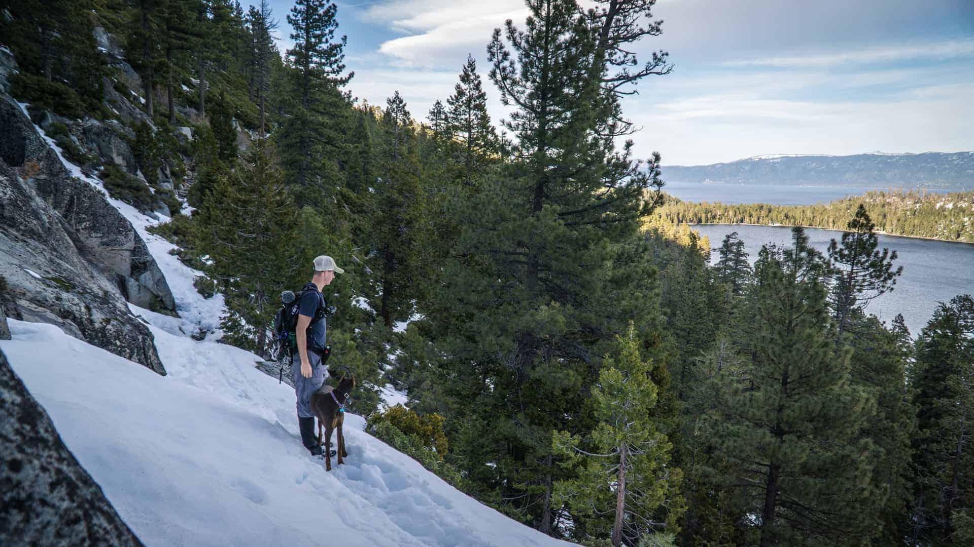 Dog Friendly Hike Near Lake Tahoe-3