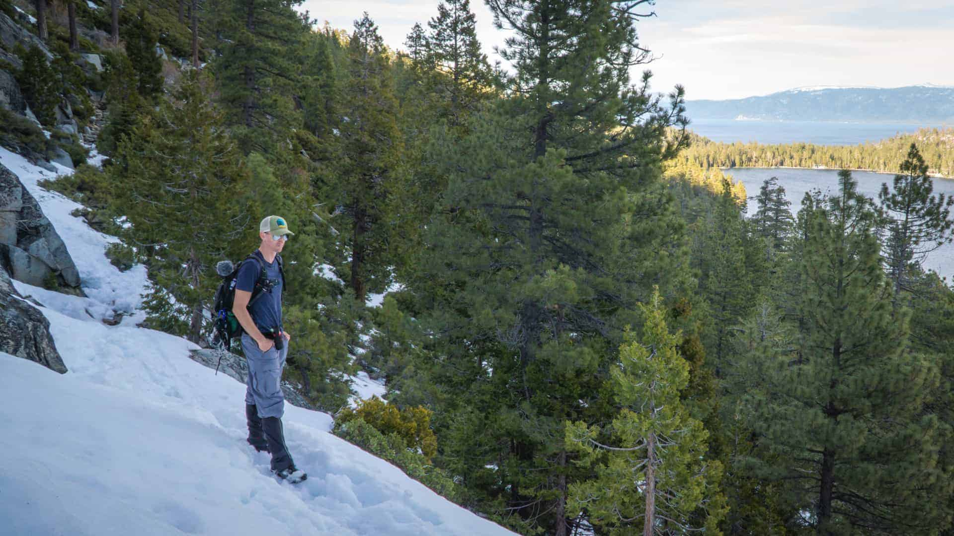 South Lake Tahoe Dog Friendly Winter