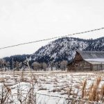7 Can't Miss Winter Activities in Jackson Hole