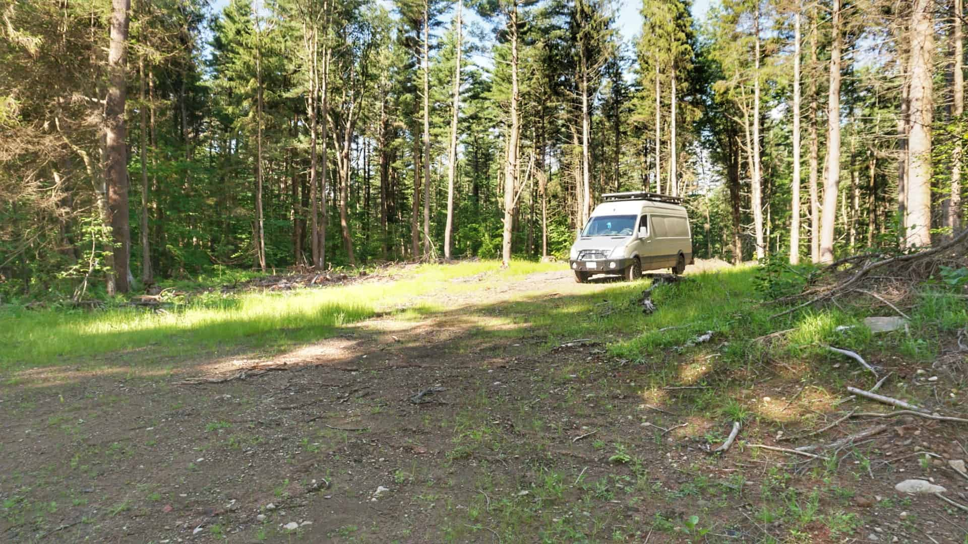Winona State Forest Primitive Camping